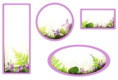 Bandiere con i fiori della viola Fotografia Stock Libera da Diritti