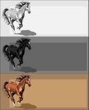 Bandiere con il cavallo corrente Fotografia Stock Libera da Diritti
