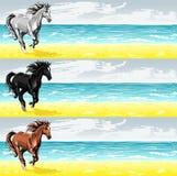 Bandiere con il cavallo corrente Fotografie Stock Libere da Diritti