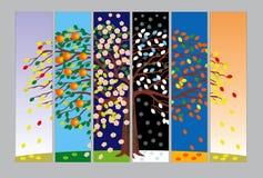 Bandiere con l'albero nelle stagioni differenti Immagine Stock