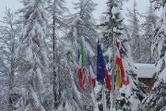 Bandiere con neve Fotografie Stock