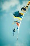 Bandiere d'ondeggiamento fotografia stock libera da diritti