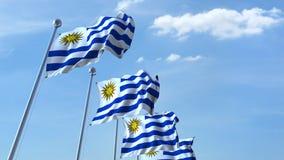Bandiere d'ondeggiamento multiple dell'Uruguay contro il cielo blu stock footage