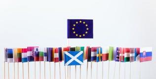 Bandiere dei membri di Unione Europea Fotografia Stock Libera da Diritti