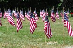 Bandiere del cimitero dei veterani Fotografia Stock Libera da Diritti
