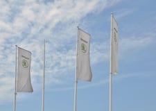 Bandiere del deposito dell'automobile di Skoda Immagini Stock Libere da Diritti