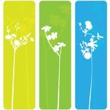 Bandiere del fiore della sorgente immagine stock libera da diritti