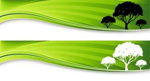 Bandiere dell'albero Immagini Stock Libere da Diritti