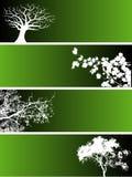 Bandiere dell'albero Immagini Stock
