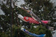 Bandiere della carpa fotografia stock libera da diritti
