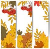 Bandiere di autunno Fotografia Stock Libera da Diritti