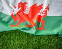 Bandiere di Galles su erba verde Fotografie Stock Libere da Diritti