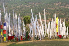 Bandiere di preghiera, Chimi Lhakang, Punakha, Bhutan Fotografia Stock Libera da Diritti