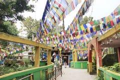 Bandiere di preghiera sul tempio buddista Immagine Stock Libera da Diritti