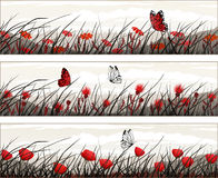 Bandiere di vettore con i fiori selvaggi e le farfalle Fotografia Stock