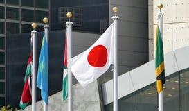 Bandiere internazionali nella parte anteriore del quartiere generale di nazioni unite a New York Immagini Stock Libere da Diritti
