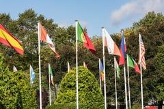 Bandiere nazionali colourful soleggiate contro fogliame verde immagine stock