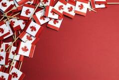 Bandiere nazionali di stuzzicadenti della foglia di acero rossa e bianca del Canada con lo spazio della copia Immagini Stock