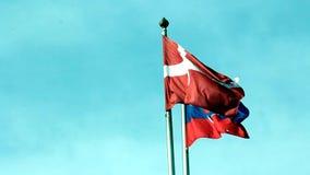 Bandiere nazionali di vari paesi europei con la bandiera della Danimarca archivi video