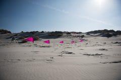 Bandiere rosa sulla spiaggia Immagini Stock
