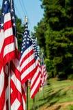 Bandiere sul quarto di luglio Immagine Stock
