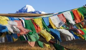 Bandiere tibetane di preghiera Fotografia Stock Libera da Diritti