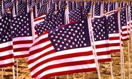 Bandiere in un campo. Fotografia Stock Libera da Diritti