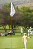 Bandierina bianca sul terreno da golf Immagine Stock