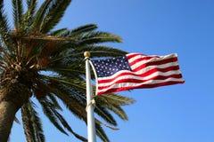 Bandierina degli Stati Uniti con la palma Fotografia Stock Libera da Diritti