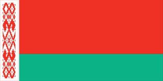 bandierina del belarus Immagine Stock