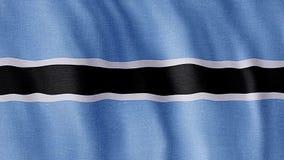 Bandierina del Botswana archivi video