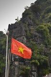 Bandierina del Vietnam Fotografia Stock