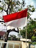 Bandierina dell'Indonesia Fotografia Stock Libera da Diritti