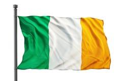 Bandierina dell'Irlanda Immagini Stock Libere da Diritti