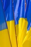 Bandierina dell'Ucraina Mazzo di bandiere Immagini Stock Libere da Diritti