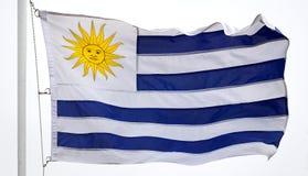 Bandierina dell'Uruguai Fotografia Stock