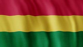 Bandierina della Bolivia video d archivio