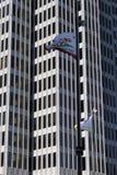 Bandierina della California e dei grattacieli Fotografia Stock