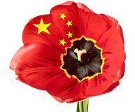 Bandierina della Cina Immagine Stock