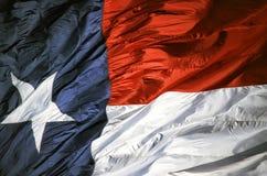 Bandierina della condizione del Texas fotografie stock libere da diritti