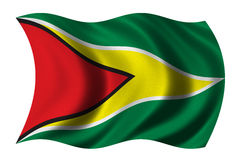 Bandierina della Guyana Fotografia Stock