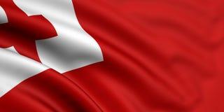 Bandierina della Tonga Fotografia Stock Libera da Diritti