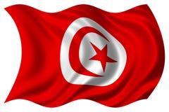 Bandierina della Tunisia isolata Fotografia Stock Libera da Diritti