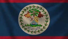 Bandierina di Belize Fotografie Stock