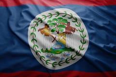 Bandierina di Belize Immagine Stock Libera da Diritti