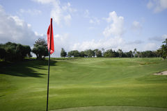 Bandierina di golf su verde Fotografia Stock Libera da Diritti