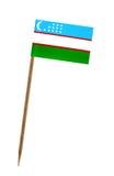 Bandierina di Uzbekistan Immagine Stock Libera da Diritti