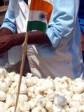 Bandierina indiana in aglio Fotografie Stock Libere da Diritti