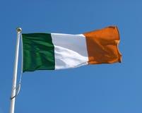 Bandierina irlandese Fotografie Stock Libere da Diritti