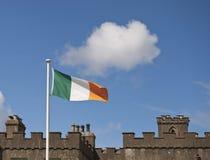 Bandierina irlandese Immagine Stock